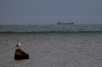 Freighter Passing Gull Island